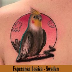 Esperanza Loaiza - ( On the road) Sweden
